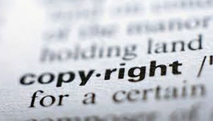 Dutch Copyright Contract Act into force